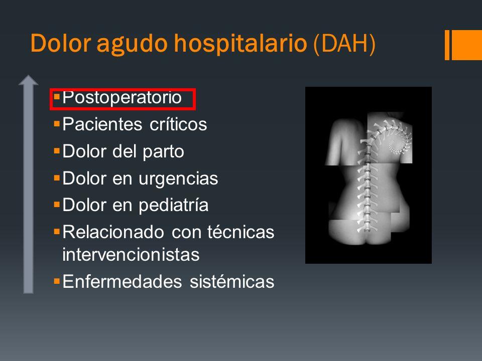 Dolor agudo hospitalario (DAH) Postoperatorio Pacientes críticos Dolor del parto Dolor en urgencias Dolor en pediatría Relacionado con técnicas interv