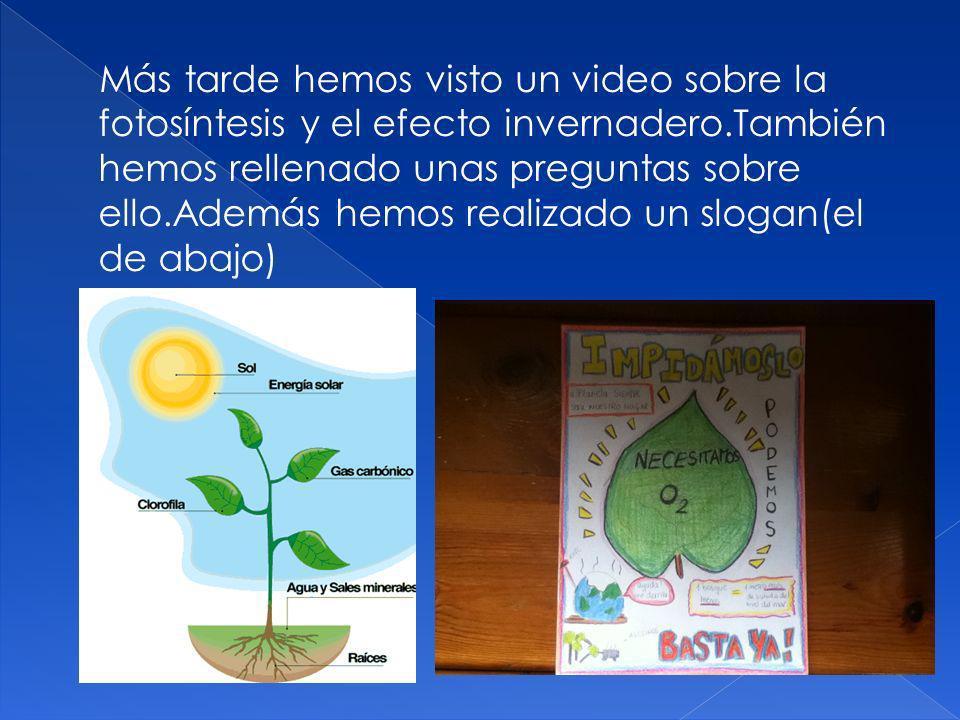 Más tarde hemos visto un video sobre la fotosíntesis y el efecto invernadero.También hemos rellenado unas preguntas sobre ello.Además hemos realizado un slogan(el de abajo)