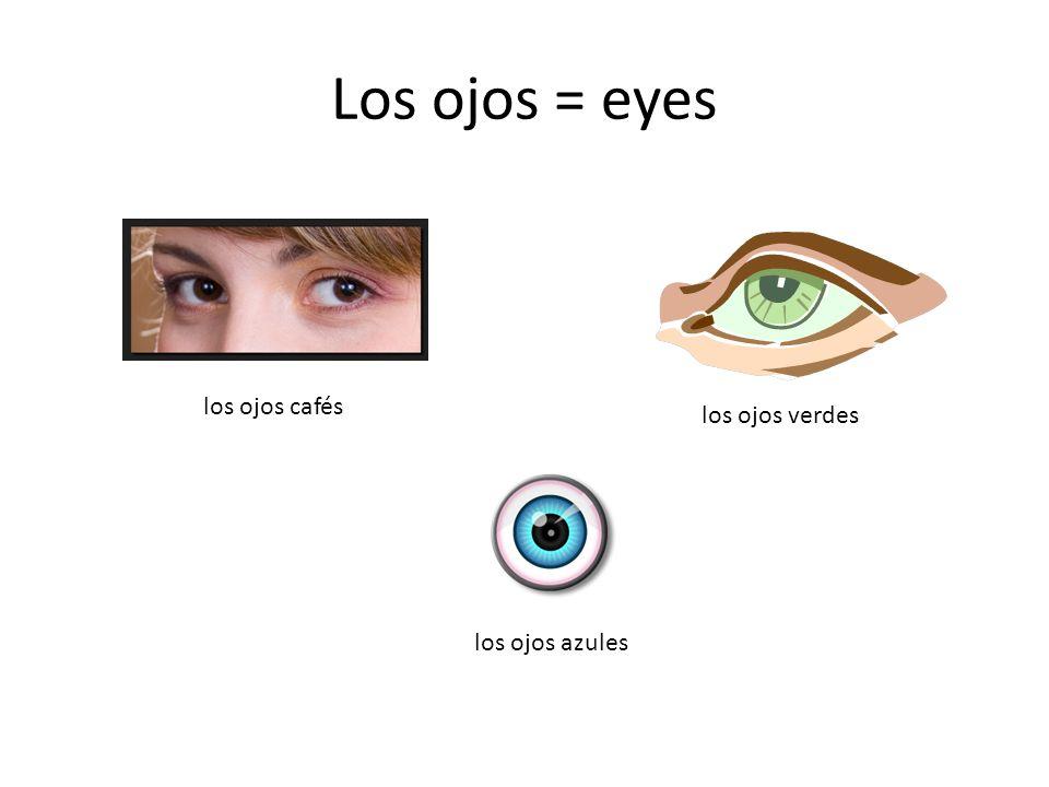 Los ojos = eyes los ojos cafés los ojos verdes los ojos azules