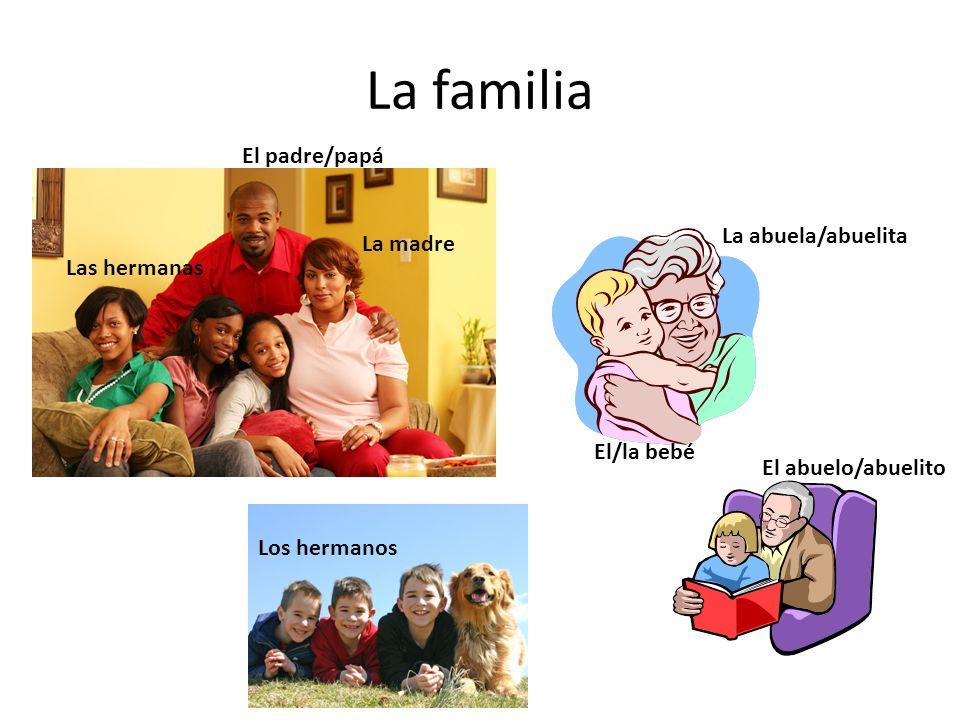 La familia El padre/papá La madre Las hermanas La abuela/abuelita El/la bebé El abuelo/abuelito Los hermanos