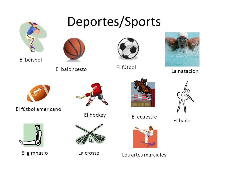 Deportes/Sports La natación El béisbol El baloncesto El fútbol El fútbol americano El hockey El ecuestre El baile El gimnasioLa crosse Los artes marciales