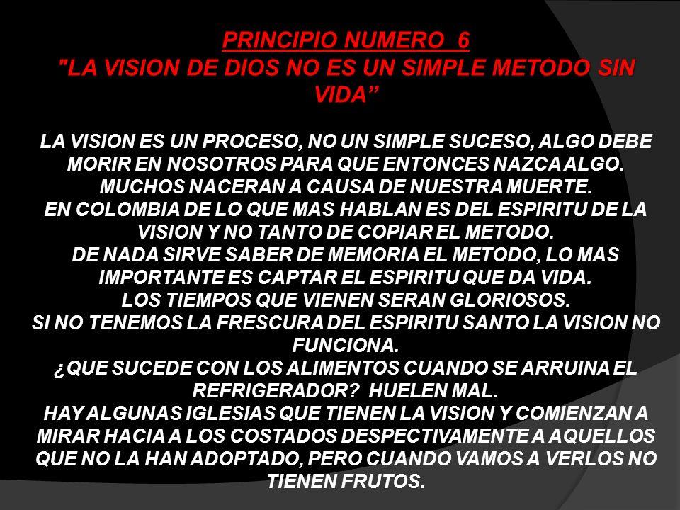 PRINCIPIO NUMERO 6