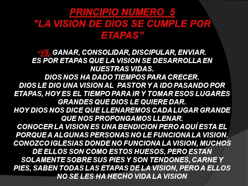 PRINCIPIO NUMERO 5