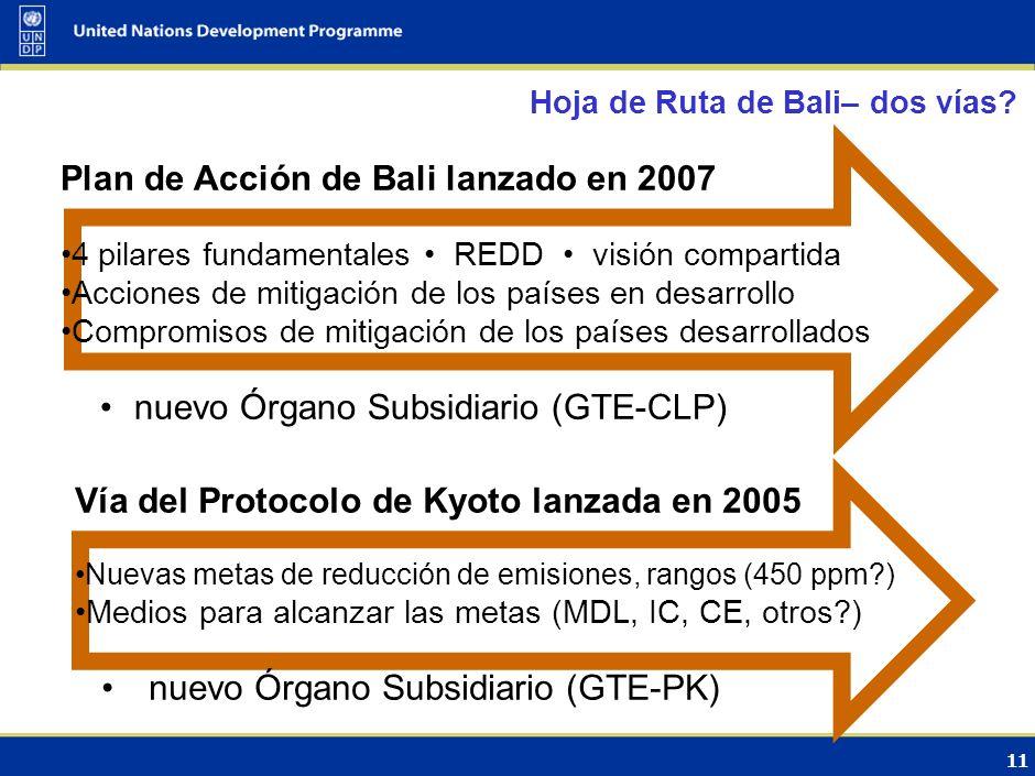 10 El Plan de Acción de Bali refleja una visión común de esfuerzos Lanza (2007) un proceso detallado para permitir la implementación plena, eficaz y s