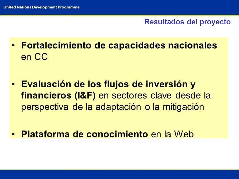 2 Objetivos del proyecto Estimar los flujos de inversión necesarios para enfrentar el CC en sectores claves (El total de inversiones y el total de fue