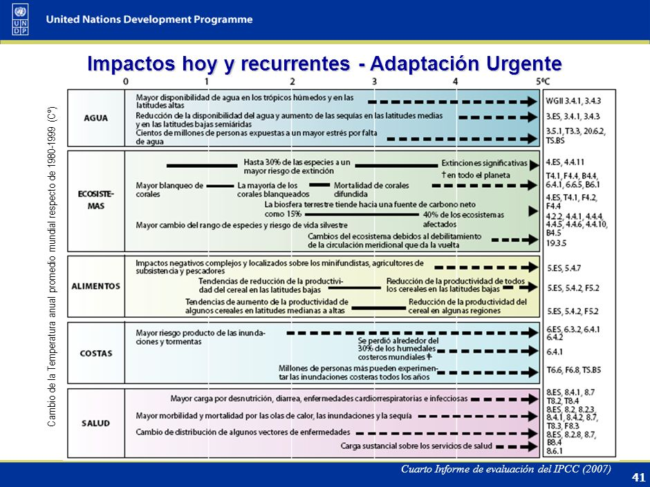 40 PLAN DE ACCIÓN DE BALI PILAR FUNDAMENTAL ADAPTACIÓN Pia Zevallos, Libélula, Perú