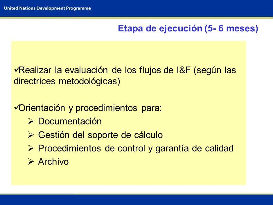 52 Recursos financieros Guías Capacitación en la evaluación de los flujos de I&F (3 días) Respaldo técnico de centros de excelencia (20 días) Platafor