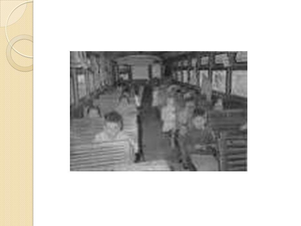 El ferrocarril El ferrocarril es un medio de transporte de viajeros y mercancías en vagones con ruedas que se desplazan sobre raíles paralelos llamados vía férrea.