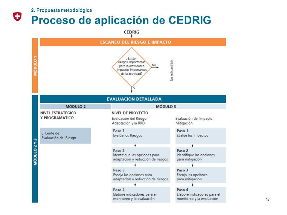 12 2. Propuesta metodológica Proceso de aplicación de CEDRIG