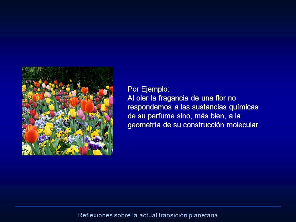 Reflexiones sobre la actual transición planetaria Por Ejemplo: Al oler la fragancia de una flor no respondemos a las sustancias químicas de su perfume