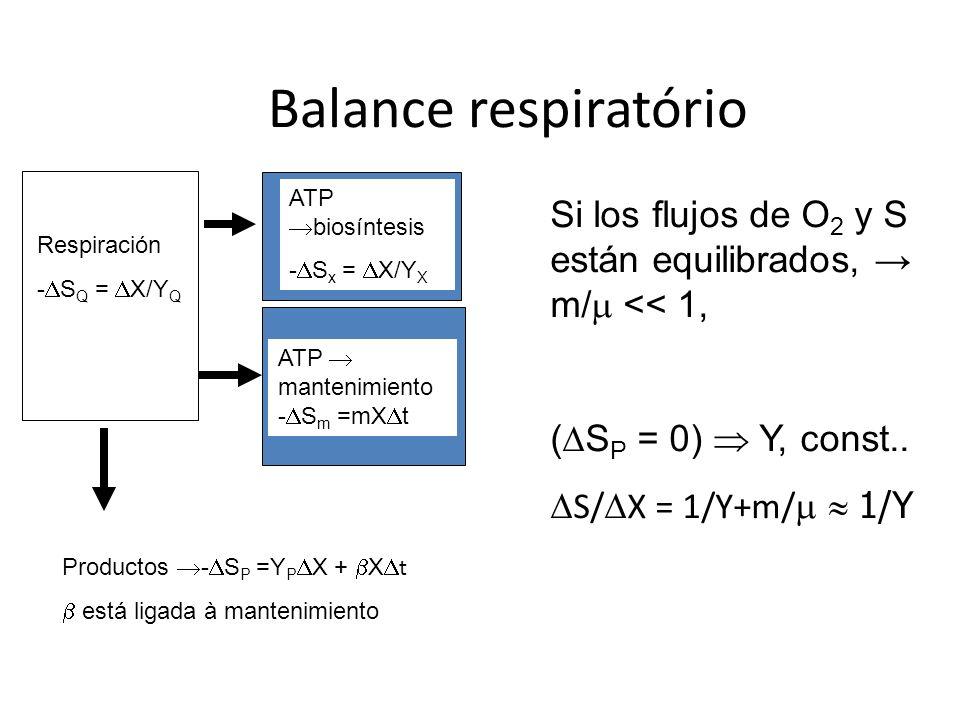 Balance respiratório Respiración - S Q = X/Y Q ATP biosíntesis - S x = X/Y X ATP mantenimiento - S m =mX t Productos - S P =Y P X + X t está ligada à