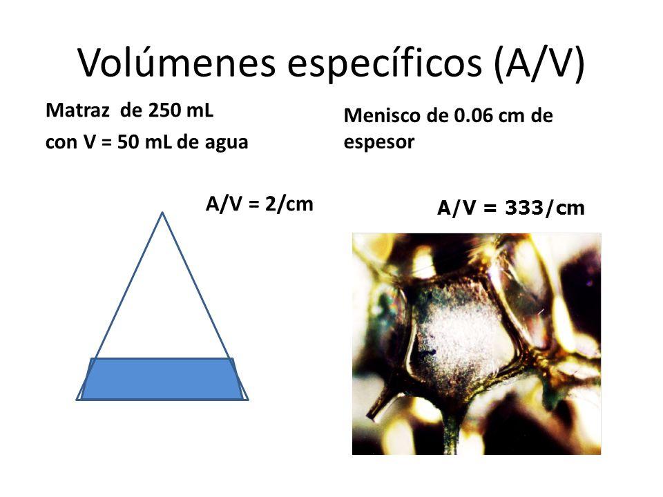 Volúmenes específicos (A/V) Matraz de 250 mL con V = 50 mL de agua A/V = 2/cm Menisco de 0.06 cm de espesor A/V = 333/cm