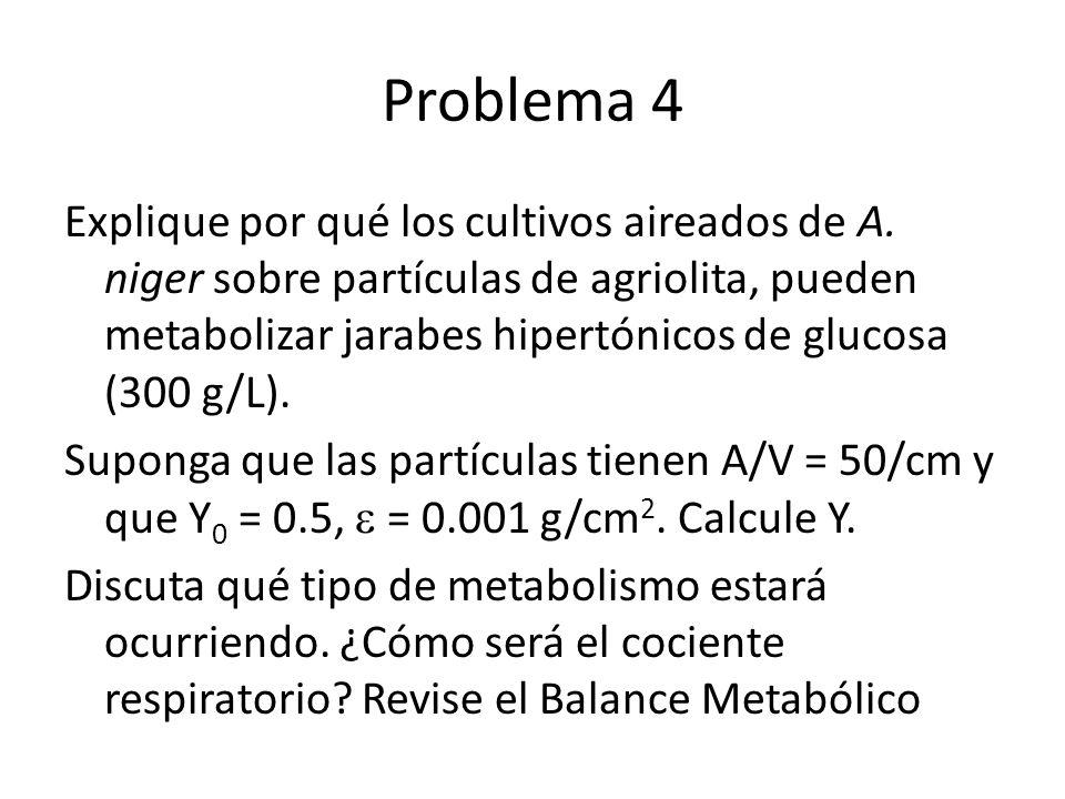 Problema 4 Explique por qué los cultivos aireados de A. niger sobre partículas de agriolita, pueden metabolizar jarabes hipertónicos de glucosa (300 g
