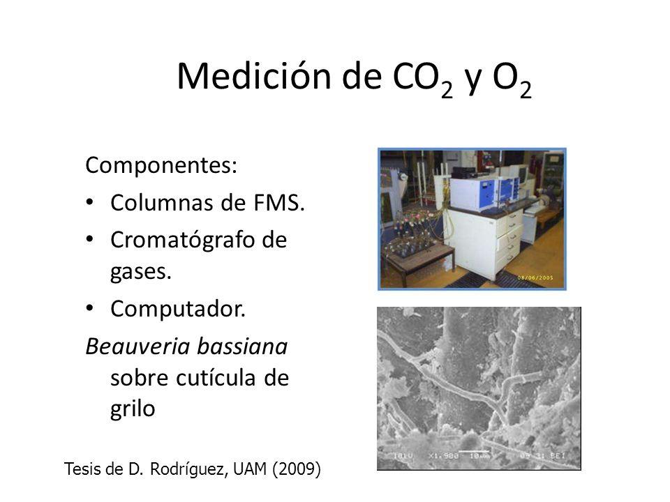 Medición de CO 2 y O 2 Componentes: Columnas de FMS. Cromatógrafo de gases. Computador. Beauveria bassiana sobre cutícula de grilo Tesis de D. Rodrígu