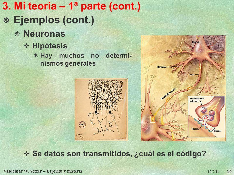 Valdemar W. Setzer – Espíritu y materia 16 16/7/11 3. Mi teoria – 1ª parte (cont.) Ejemplos (cont.) Neuronas Hipótesis Hay muchos no determi- nismos g