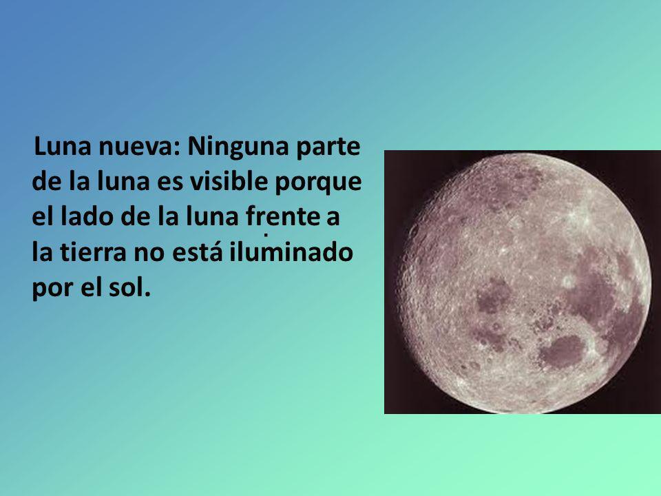 Luna nueva: Ninguna parte de la luna es visible porque el lado de la luna frente a la tierra no está iluminado por el sol..
