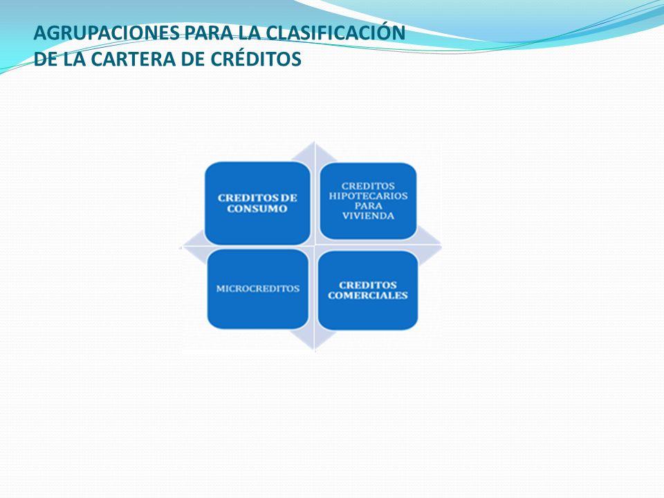AGRUPACIONES PARA LA CLASIFICACIÓN DE LA CARTERA DE CRÉDITOS