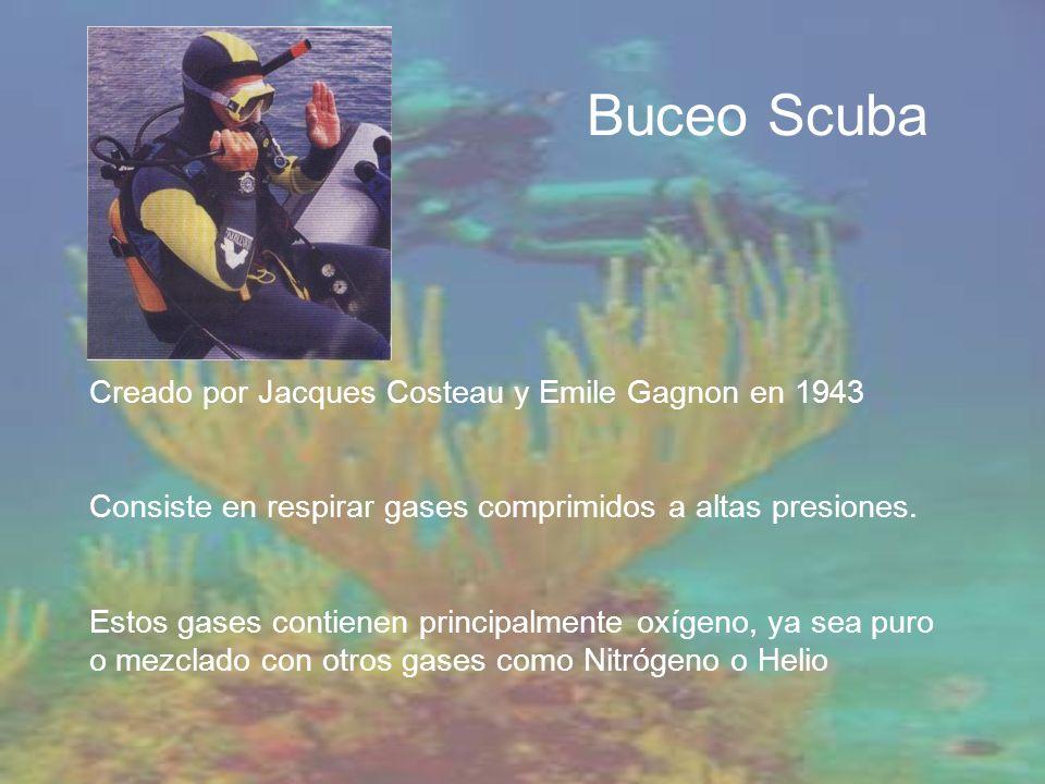 Buceo Scuba Creado por Jacques Costeau y Emile Gagnon en 1943 Consiste en respirar gases comprimidos a altas presiones. Estos gases contienen principa