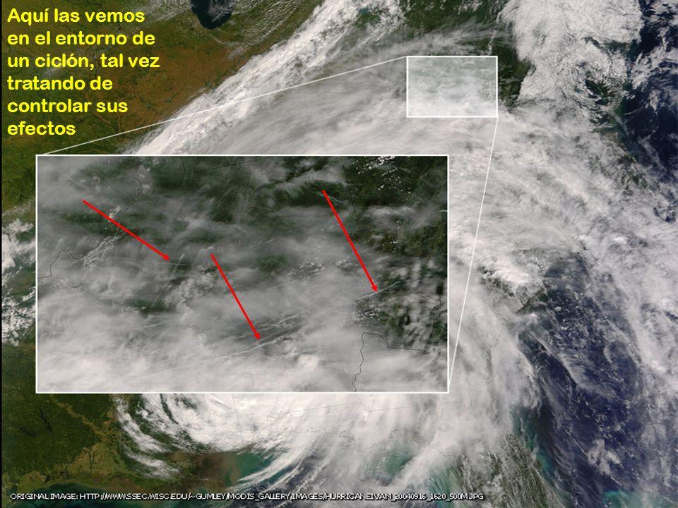 Aquí las vemos en el entorno de un ciclón, tal vez tratando de controlar sus efectos