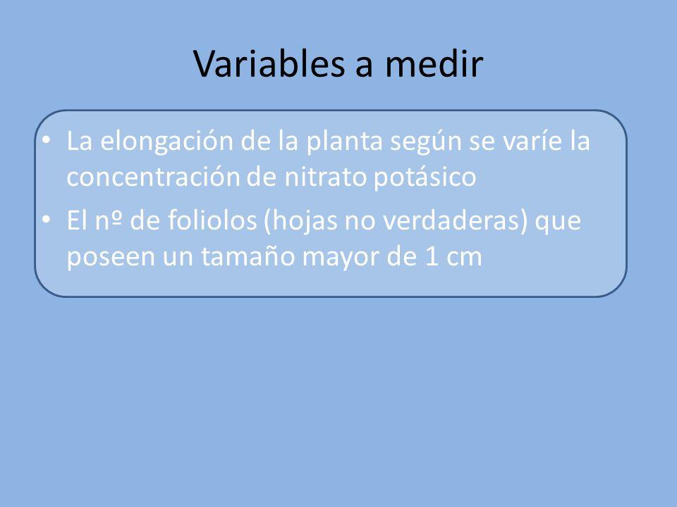 Objetivo científico del experimento Analizar la incidencia del Nitrato potásico como fertilizante en agua de riego (fertirrigación), sobre la elongación del tallo y el número de foliolos en las primeras fases de desarrollo de la especie Lens culinaris.