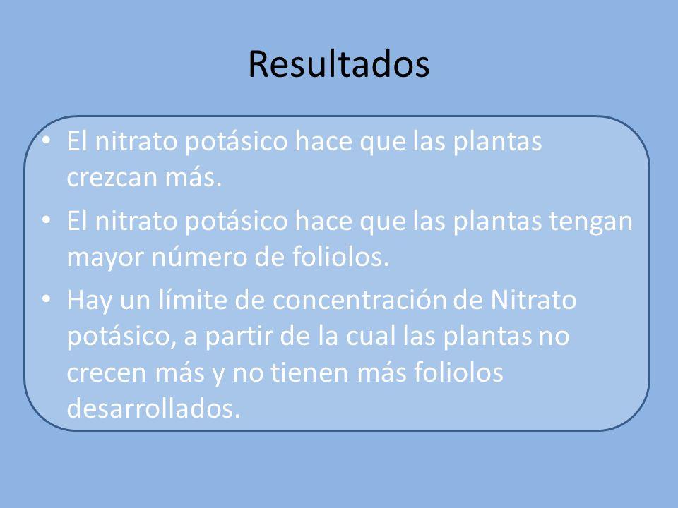Variables a medir La elongación de la planta según se varíe la concentración de nitrato potásico El nº de foliolos (hojas no verdaderas) que poseen un tamaño mayor de 1 cm