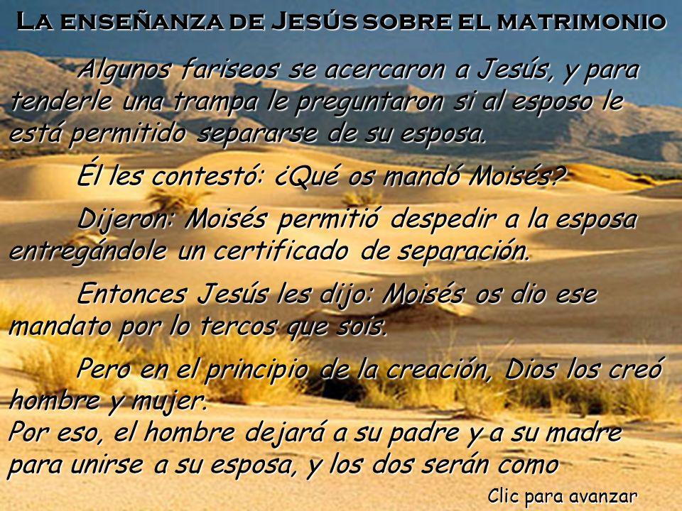 Lectio divina domingo 7 Octbre 2012 Sociedad Bíblica España Música: Monasterio de Piedra (HD) Montaje: Eloísa DJ