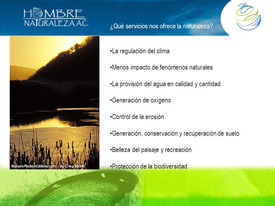 ¿Qué servicios nos ofrece la naturaleza? La regulación del clima Menos impacto de fenómenos naturales La provisión del agua en calidad y cantidad Gene