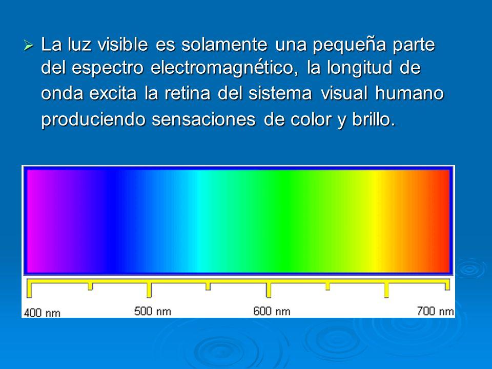 La luz visible es solamente una peque ñ a parte del espectro electromagn é tico, la longitud de onda excita la retina del sistema visual humano produc