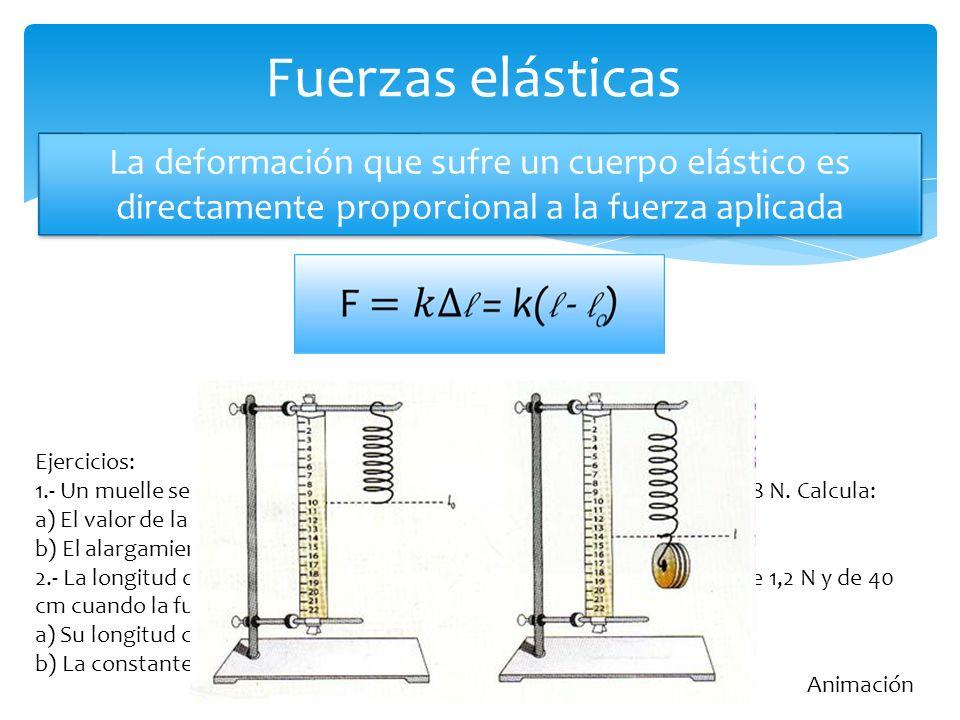 Fuerzas elásticas Animación La deformación que sufre un cuerpo elástico es directamente proporcional a la fuerza aplicada Ejercicios: 1.- Un muelle se alarga 12 cm cuando ejercemos sobre él una fuerza de 18 N.