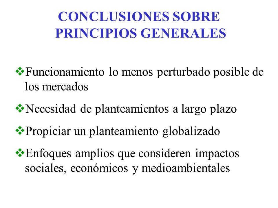 CONCLUSIONES SOBRE PRINCIPIOS GENERALES Funcionamiento lo menos perturbado posible de los mercados Necesidad de planteamientos a largo plazo Propiciar un planteamiento globalizado Enfoques amplios que consideren impactos sociales, económicos y medioambientales