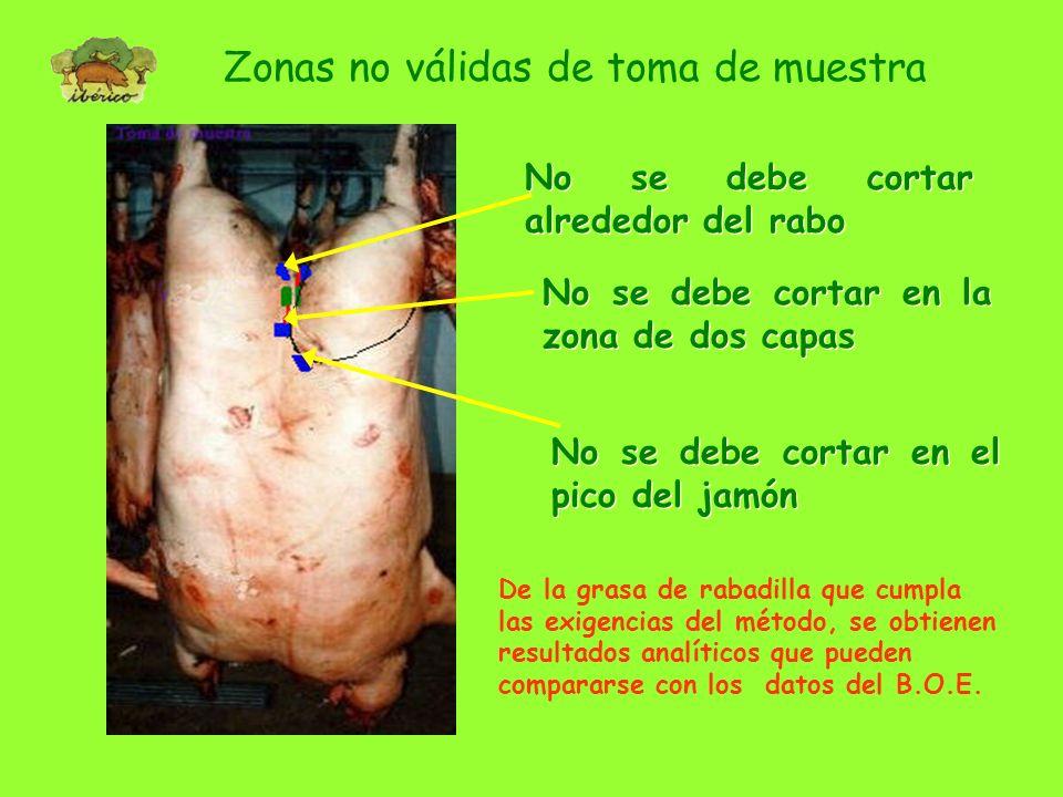Zona de toma de muestra: Rabadilla Cada trozo obtenido de la rabadilla debe contener la piel, todo el tocino hasta magro y algo de magro Se levanta ac