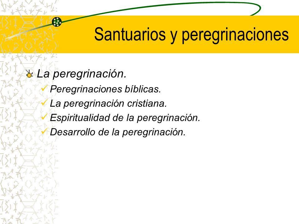 Santuarios y peregrinaciones El santuario.Algunos principios.