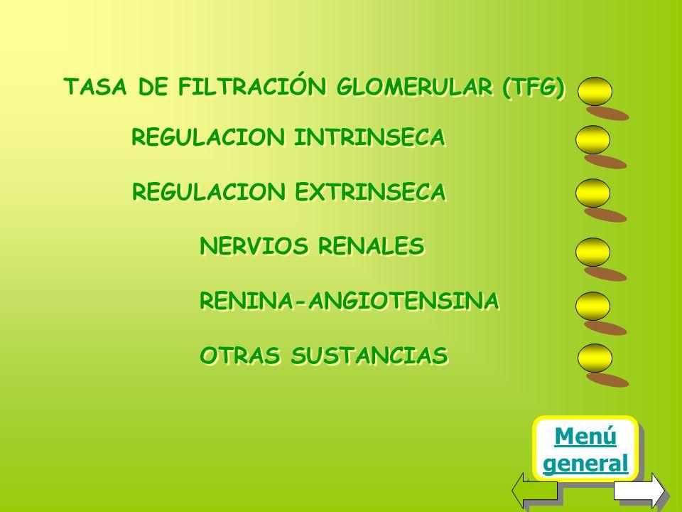 Menú general Menú general TASA DE FILTRACIÓN GLOMERULAR (TFG) REGULACION INTRINSECA REGULACION EXTRINSECA NERVIOS RENALES RENINA-ANGIOTENSINA OTRAS SUSTANCIAS TASA DE FILTRACIÓN GLOMERULAR (TFG) REGULACION INTRINSECA REGULACION EXTRINSECA NERVIOS RENALES RENINA-ANGIOTENSINA OTRAS SUSTANCIAS