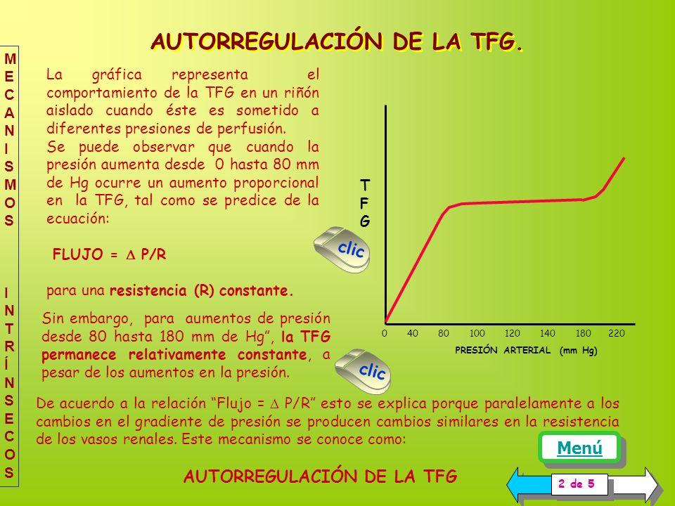 La gráfica representa el comportamiento de la TFG en un riñón aislado cuando éste es sometido a diferentes presiones de perfusión.