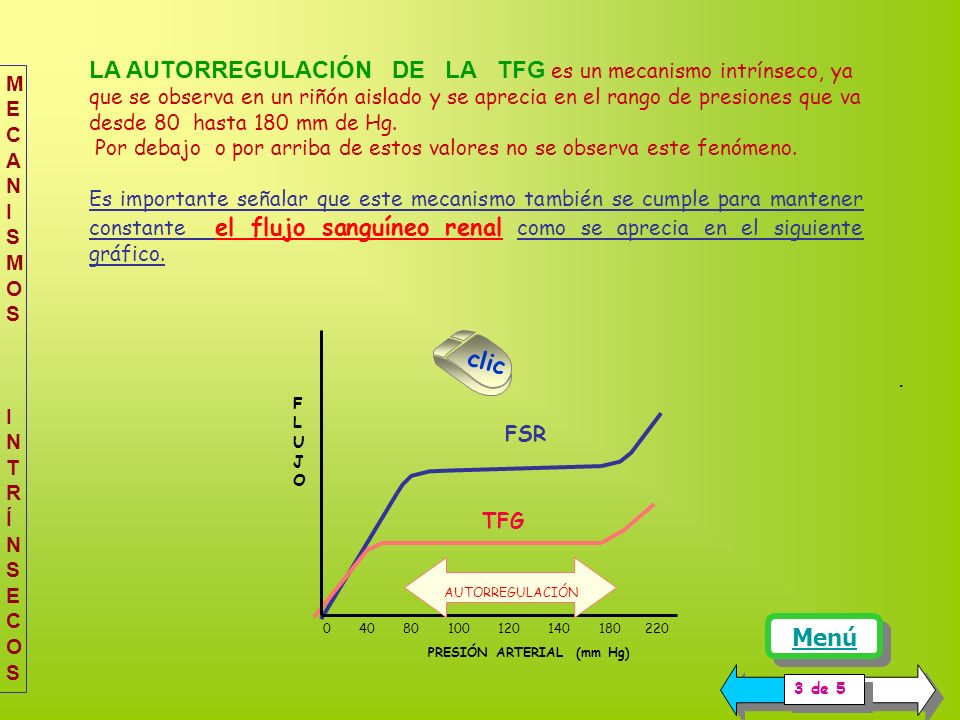 La gráfica representa el comportamiento de la TFG en un riñón aislado cuando éste es sometido a diferentes presiones de perfusión. Se puede observar q