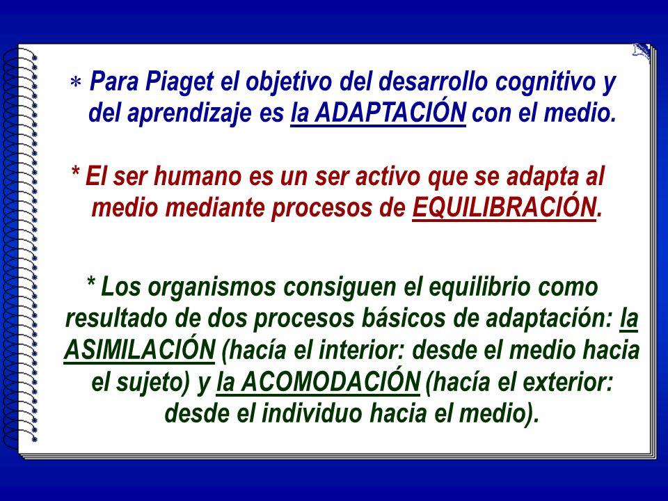 * El ser humano es un ser activo que se adapta al medio mediante procesos de EQUILIBRACIÓN.