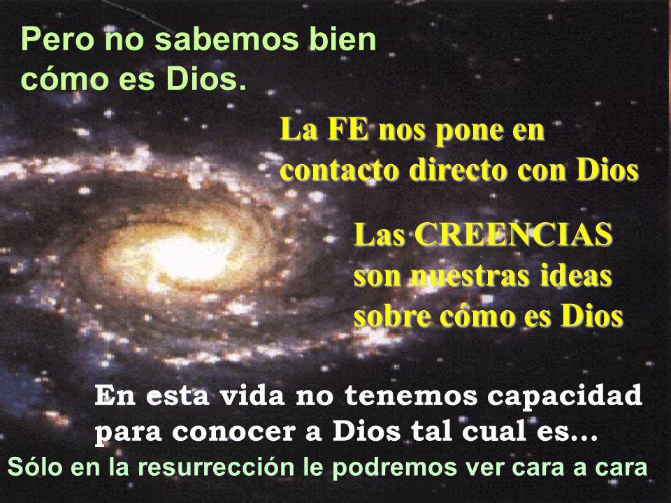 Pero no sabemos bien cómo es Dios. En esta vida no tenemos capacidad para conocer a Dios tal cual es… Sólo en la resurrección le podremos ver cara a c
