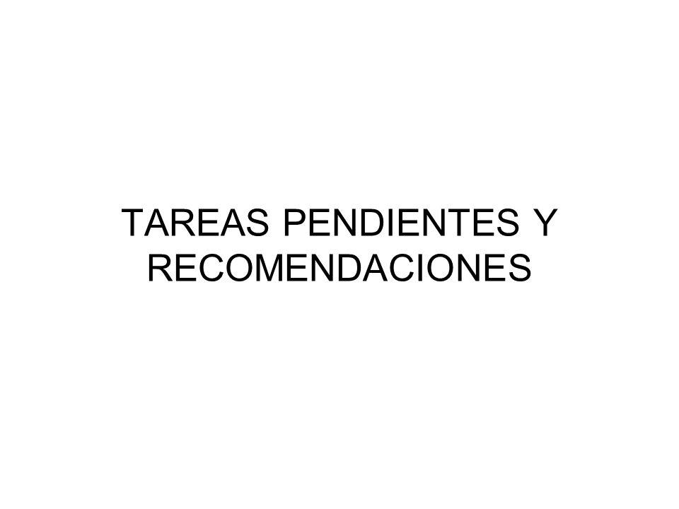 TAREAS PENDIENTES Y RECOMENDACIONES