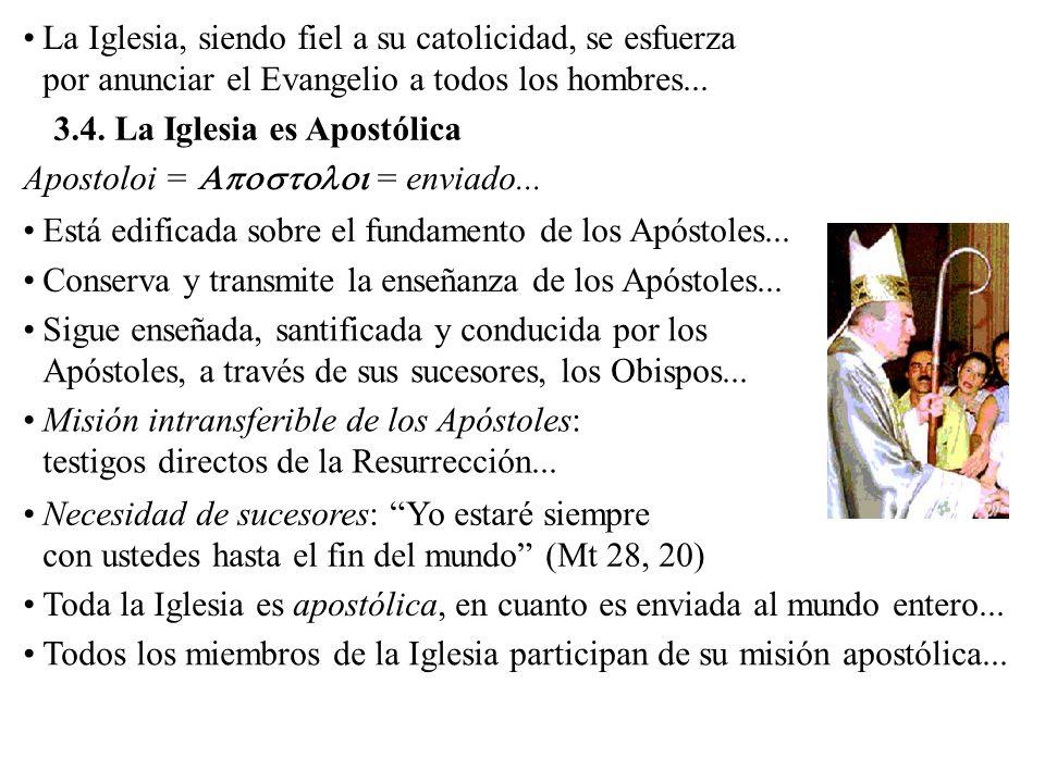 3.4. La Iglesia es Apostólica La Iglesia, siendo fiel a su catolicidad, se esfuerza por anunciar el Evangelio a todos los hombres... Está edificada so