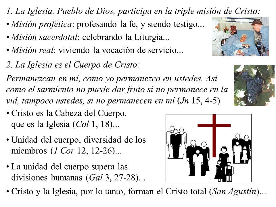 1. La Iglesia, Pueblo de Dios, participa en la triple misión de Cristo: Misión profética: profesando la fe, y siendo testigo... Misión sacerdotal: cel