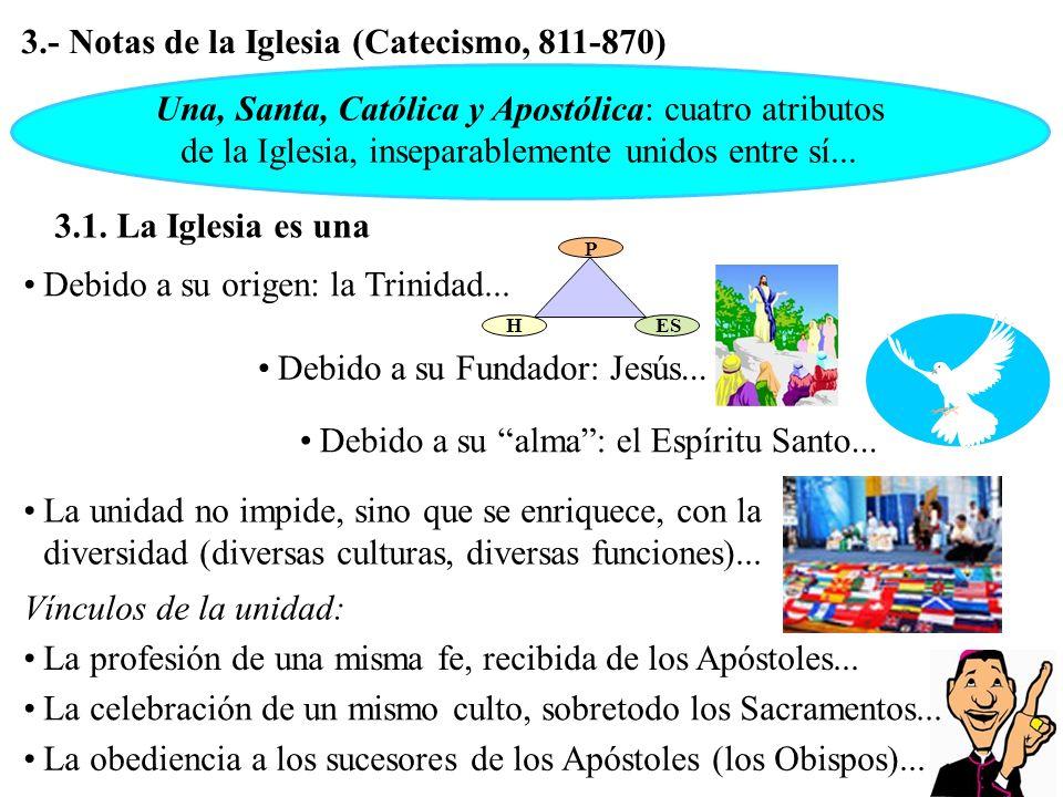 3.1. La Iglesia es una 3.- Notas de la Iglesia (Catecismo, 811-870) Una, Santa, Católica y Apostólica: cuatro atributos de la Iglesia, inseparablement
