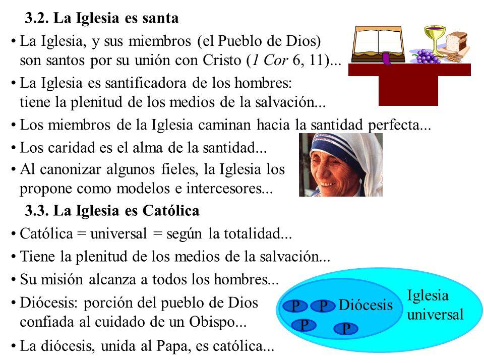 Quién pertenece a la Iglesia católica (Lumen gentium, 14-16): Plenamente incorporados: los que están unidos a Cristo dentro de su estructura visible, por la profesión de fe, los sacramentos y el gobierno eclesiástico...