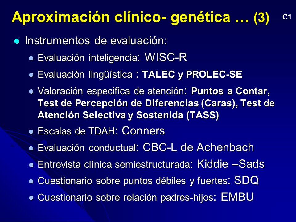 Aproximación clínico- genética … (3) Instrumentos de evaluación: Instrumentos de evaluación: Evaluación inteligencia : WISC-R Evaluación inteligencia : WISC-R Evaluación lingüística : TALEC y PROLEC-SE Evaluación lingüística : TALEC y PROLEC-SE Valoración especifica de atención : Puntos a Contar, Test de Percepción de Diferencias (Caras), Test de Atención Selectiva y Sostenida (TASS) Valoración especifica de atención : Puntos a Contar, Test de Percepción de Diferencias (Caras), Test de Atención Selectiva y Sostenida (TASS) Escalas de TDAH : Conners Escalas de TDAH : Conners Evaluación conductual : CBC-L de Achenbach Evaluación conductual : CBC-L de Achenbach Entrevista clínica semiestructurada : Kiddie –Sads Entrevista clínica semiestructurada : Kiddie –Sads Cuestionario sobre puntos débiles y fuertes : SDQ Cuestionario sobre puntos débiles y fuertes : SDQ Cuestionario sobre relación padres-hijos : EMBU Cuestionario sobre relación padres-hijos : EMBU C1