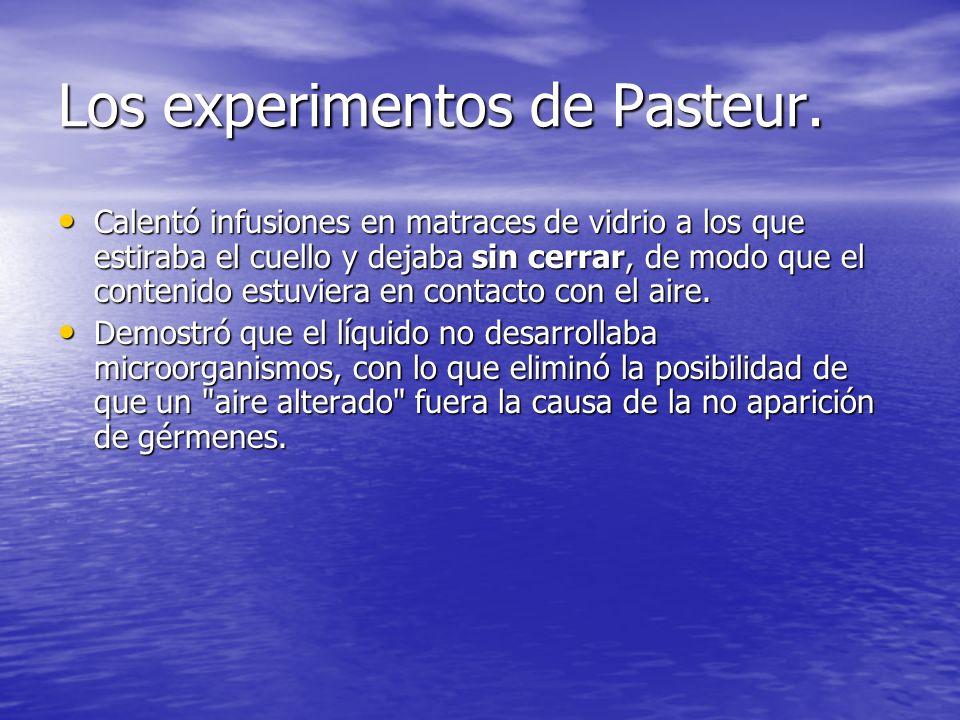 Los experimentos de Pasteur. Calentó infusiones en matraces de vidrio a los que estiraba el cuello y dejaba sin cerrar, de modo que el contenido estuv