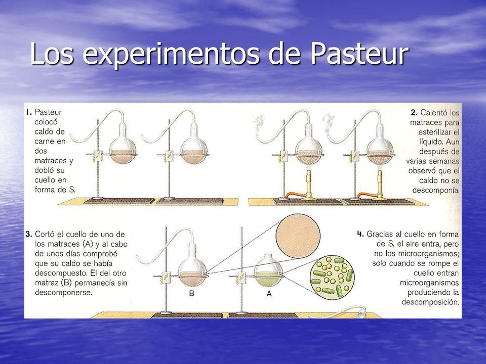Los experimentos de Pasteur