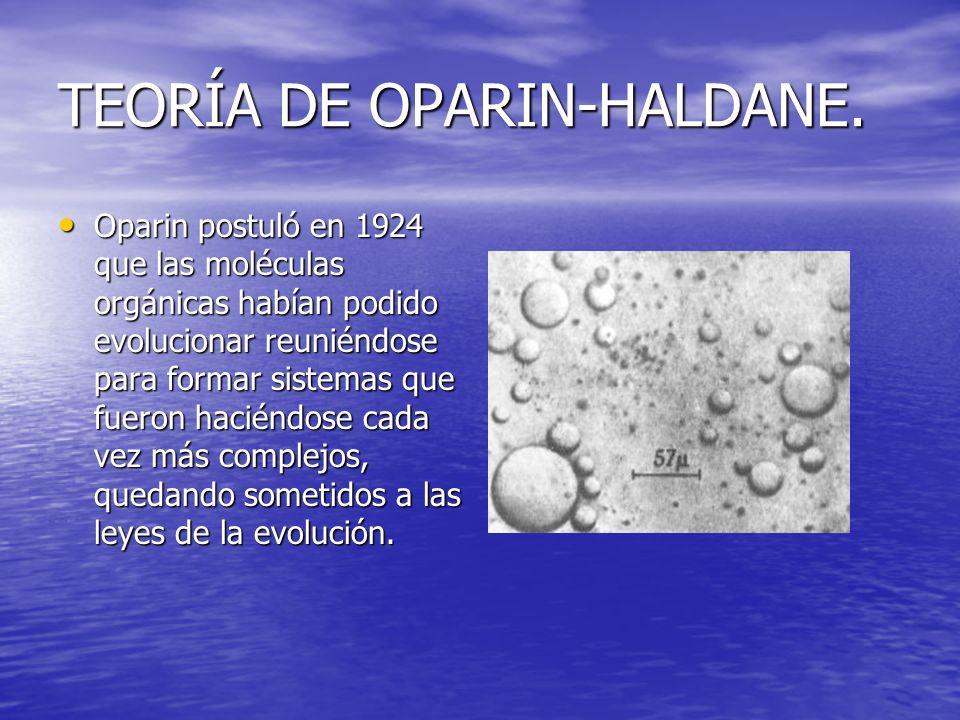 TEORÍA DE OPARIN-HALDANE. Oparin postuló en 1924 que las moléculas orgánicas habían podido evolucionar reuniéndose para formar sistemas que fueron hac