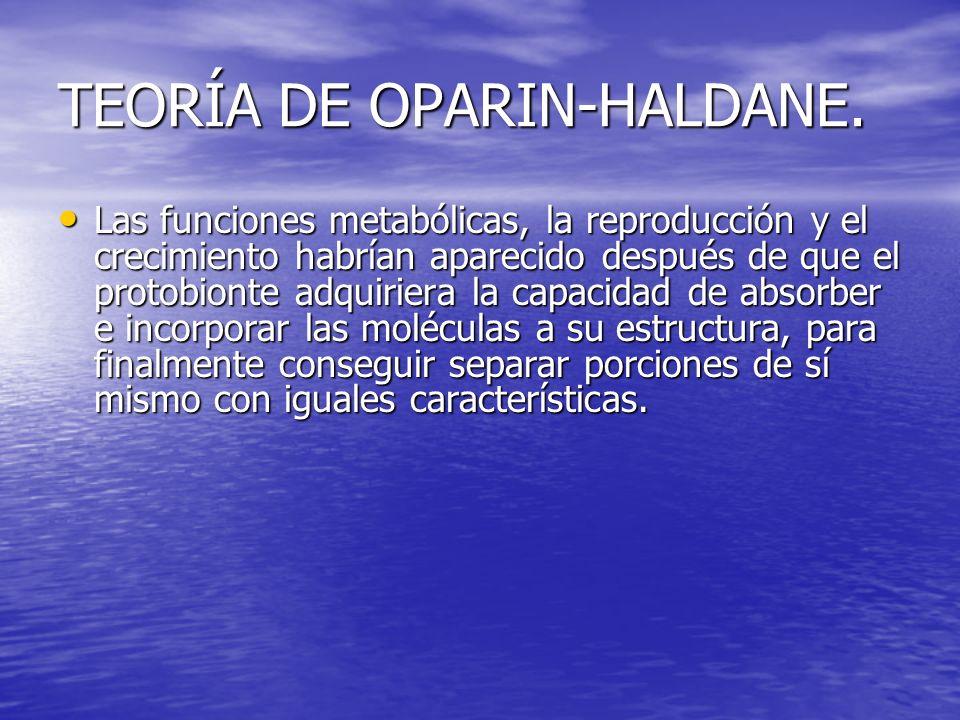 TEORÍA DE OPARIN-HALDANE. Las funciones metabólicas, la reproducción y el crecimiento habrían aparecido después de que el protobionte adquiriera la ca