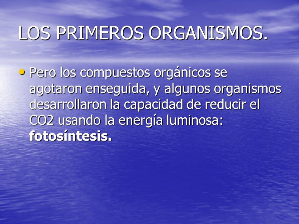 LOS PRIMEROS ORGANISMOS. Pero los compuestos orgánicos se agotaron enseguida, y algunos organismos desarrollaron la capacidad de reducir el CO2 usando