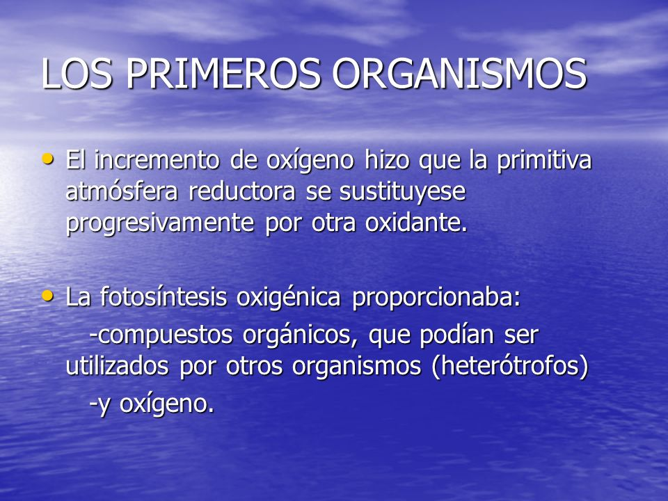 LOS PRIMEROS ORGANISMOS El incremento de oxígeno hizo que la primitiva atmósfera reductora se sustituyese progresivamente por otra oxidante. El increm