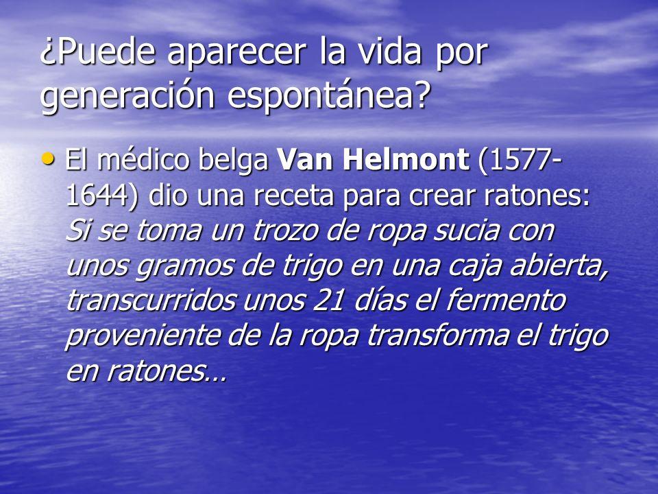 ¿Puede aparecer la vida por generación espontánea? El médico belga Van Helmont (1577- 1644) dio una receta para crear ratones: Si se toma un trozo de